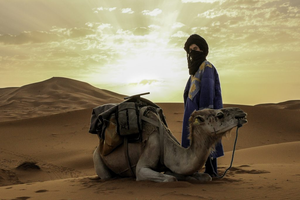 desert and camel 1024x683 1